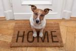 home_sweet_home_shutterstock_112951720-300x200